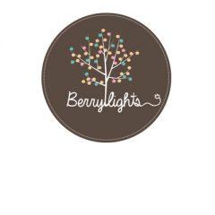 Berry lights – šventės ir namų jaukumui