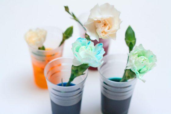 kaip nudažyti gėles