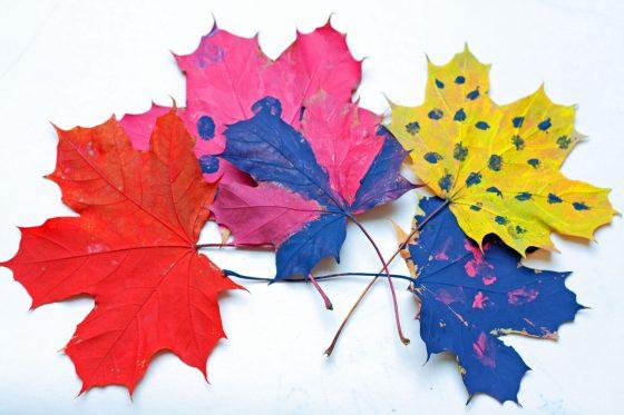 medžio lapų spalvojimas
