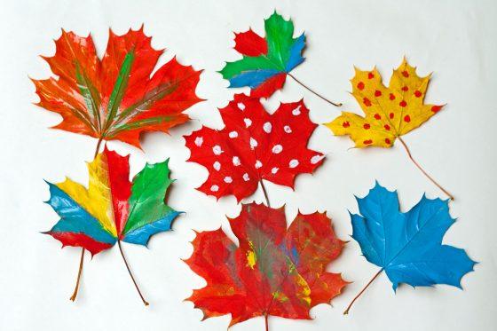 spalvoti medžių lapai darbeiai darželinukams