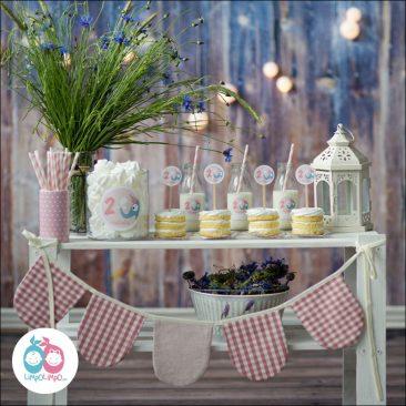 pirmojo gimtadienio stalas dekoravimas