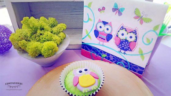 pelėdžiukų gimtadienis idėjos