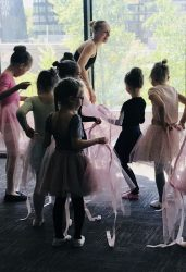 balerinų gimtadienis mergaitei vilniuje