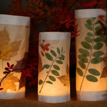 rudeniniai žibintai šventei ar tiesiog jaukiai pasišviesti