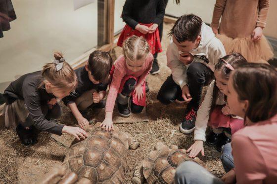 edukacija vaikams su gyvūnais