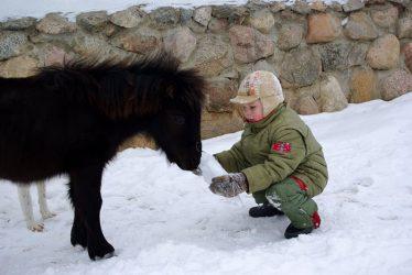 idėjos vaiko gimtadieniui žiemą