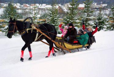 Važinėjimas rogėmis su arkliais vaikams