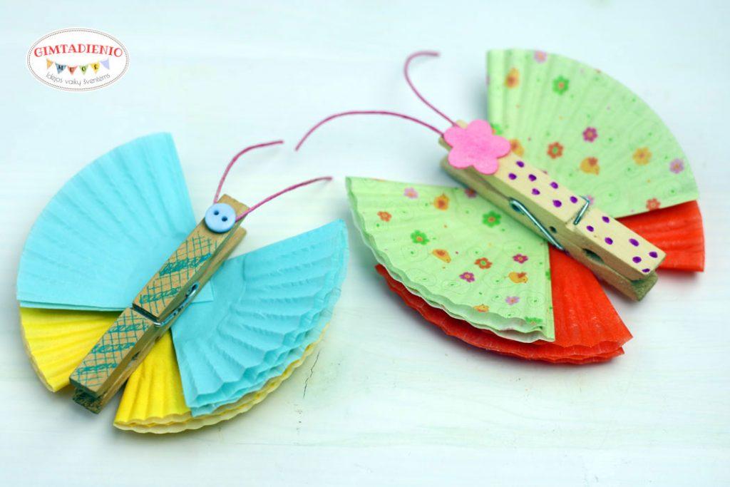 idėjos drugelių gimtadienis