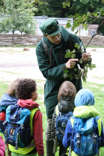 edukacinė programa miškas eigulys