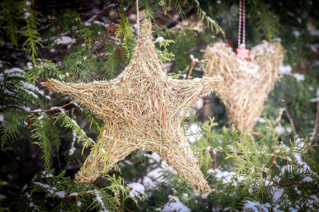 kalėdinės kiemo dekoracijos idėjos