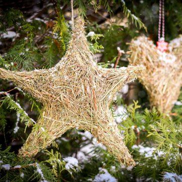 žvaigždė eglutė ir širdis greitos kalėdinės dekoracijos iš šieno