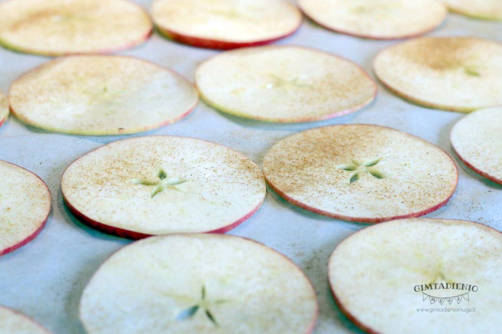 greiti receptai iš obuolių