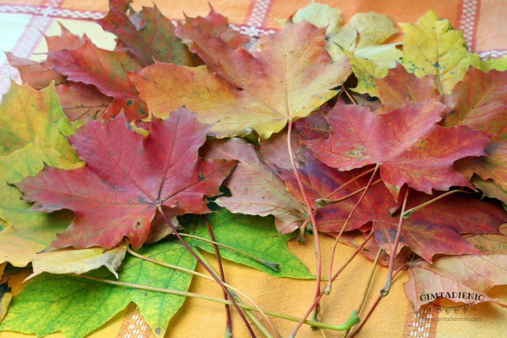 darbeliai iš rudens lapų