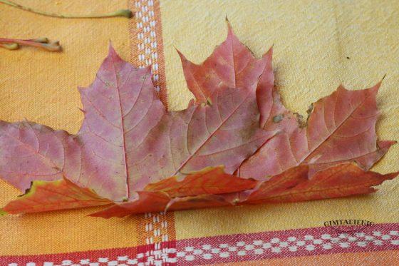 lapų karūna kaip pagaminti