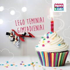 lego teminiai gimtadieniai