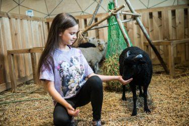 mergaitės gimtadienis su žvėriukais kaunas
