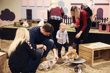 vaikų gimtadienis su gyvūnais vilnius