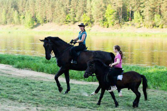 mergaitės gimtadienis žirgai