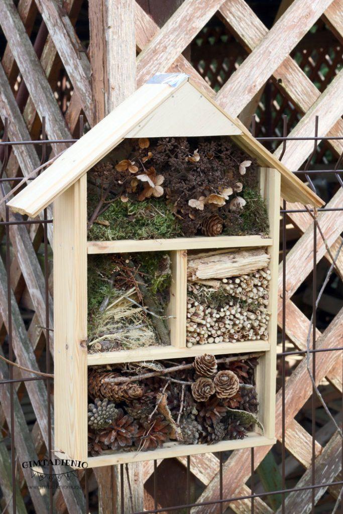 vabzdžių viešbutis kaip pasidaryti