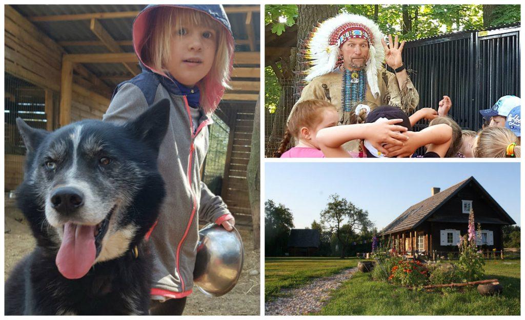indėniška vaikų vasaros stovykla su haskiais gyvūnais