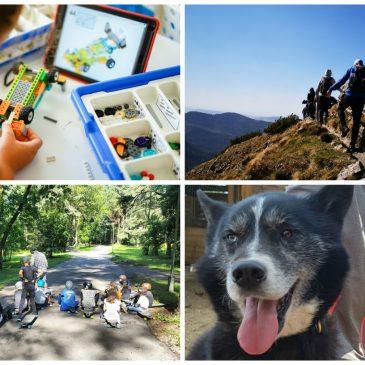 vasaros stovyklos 2020 kokios įdomios programos laukia vaikų
